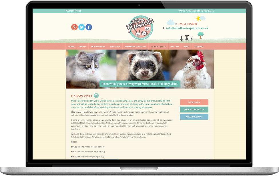 case studies web page design