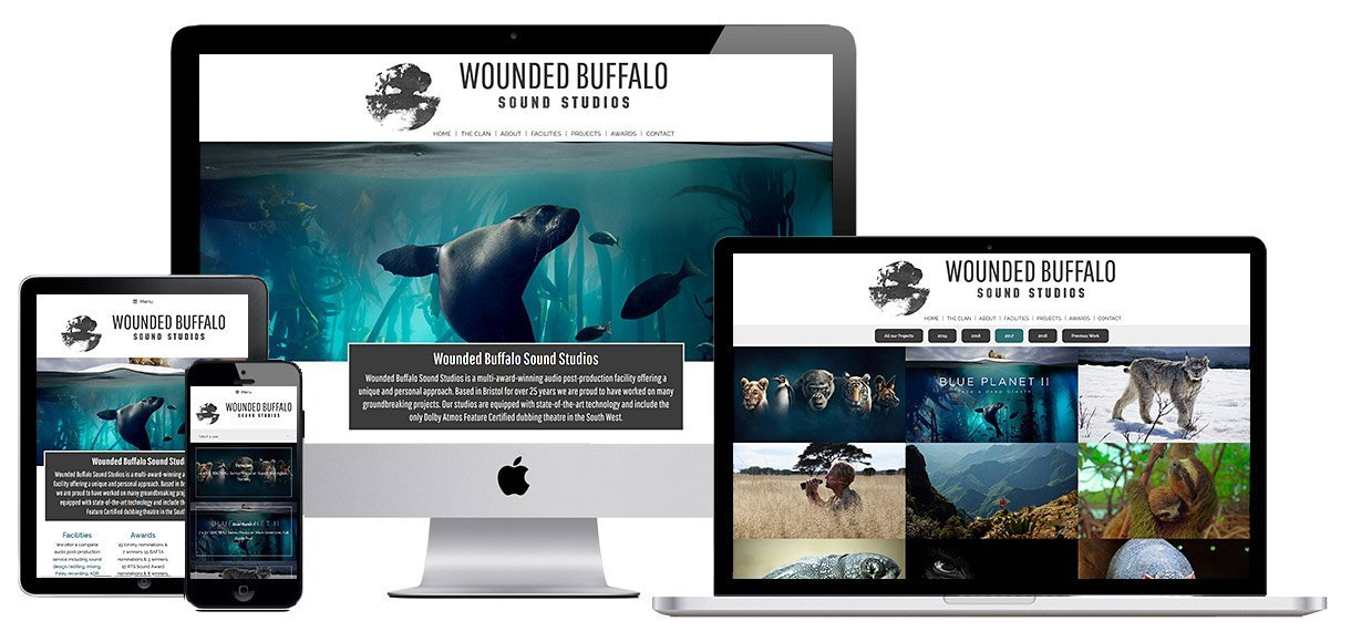 Case Study - Wounded Buffalo